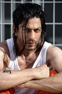 Don2 Shahrukh Khan