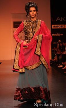 Shyamal & Bhumika 7