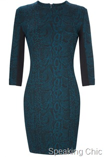 FC-Sidney Jersey dress AW 2011