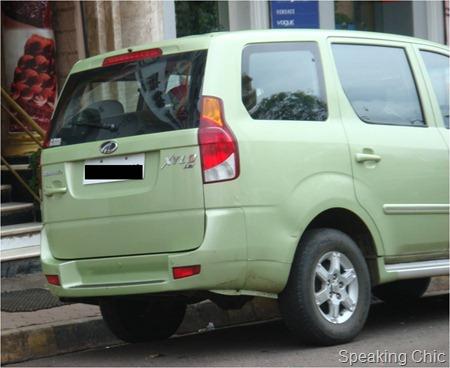 green-xylo